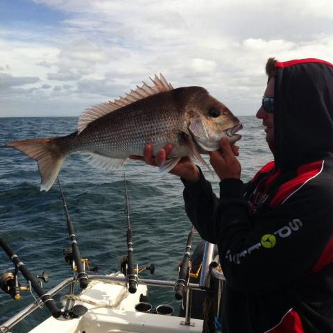 SNAPPER FISHING CHARTER PORT PHILLIP BAY
